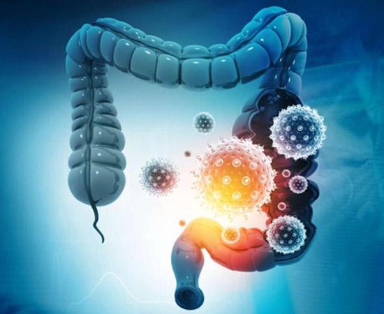 La microbiota intestinal y la evolución del enfermo por COVID-19